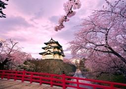 hirosaki_castle_japan-wide-1024x640